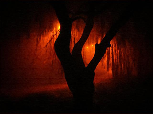 Orange Fog / Credit: jarr1520 (Flickr)