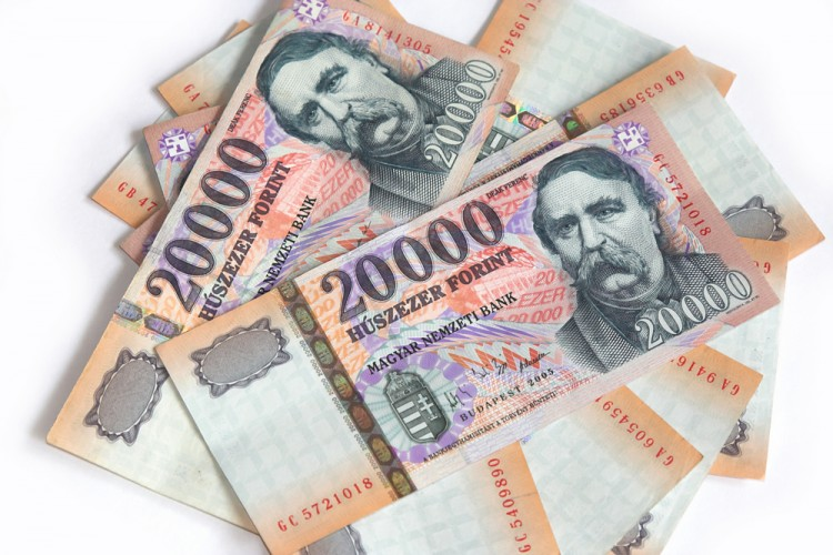 The forint is here to stay...