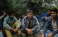 These Afghan refugees hide in the forests of Vojvodia, Serbia, awaiting the safest moment to cross into Hungary. Photo: Sima Diab/The Guardian.