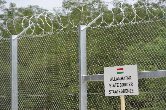 Fence along the border between Hungary and Serbia. Photo: MTI.