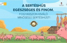 One of the posters is the official ad in Hungarian  ..  Pork is healthy and tasty!