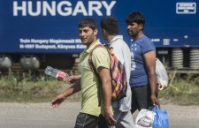 Refugees arriving in Hungary, in 2015. Photo: MTI.