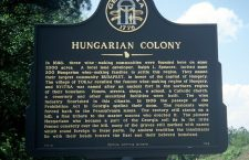 The story of the Hungarian vineyards in Tallapoosa, Georgia