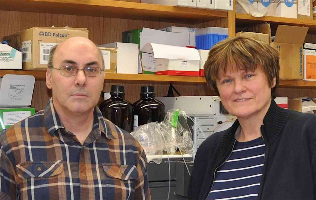 Katalin Karikó and Drew Weissman.  A shared Nobel-prize for mRNA?